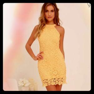 NWOT Lulu's Love Poem Yellow Lace Mini Dress